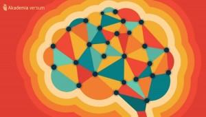 kolory mozgu_akademia_versum1