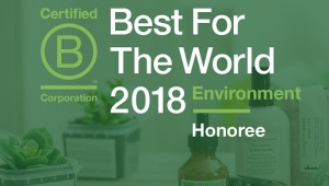 DAV-BCorp-Bestfortheworld — kopia