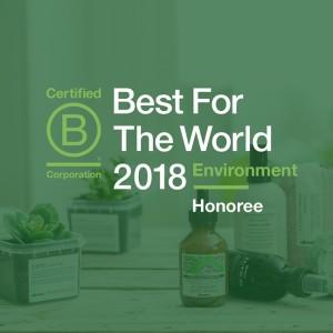 DAV-BCorp-Bestfortheworld