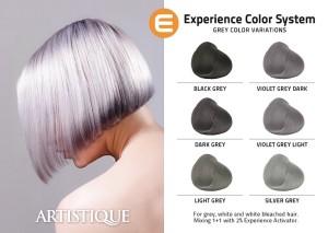 _Experience_Grey[[2][1]_Strona_1