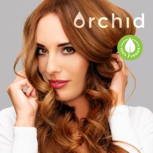MOK--29-03-2020-Orchid-Rebuild_900x900